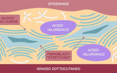 Quali sono gli effetti dell'acido ialuronico sui processi di invecchiamento cutaneo?